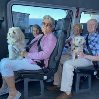 Residents with dogs